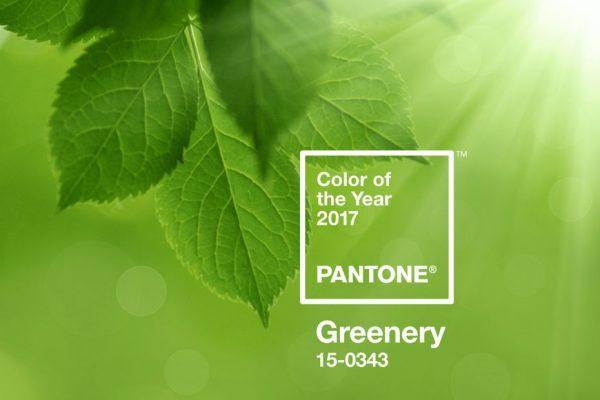 couleur vert décoration