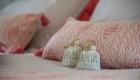 des gîtes dans un mas sur Saze, par Kty.L, décoratrice UFDI à saze (30) : décoration